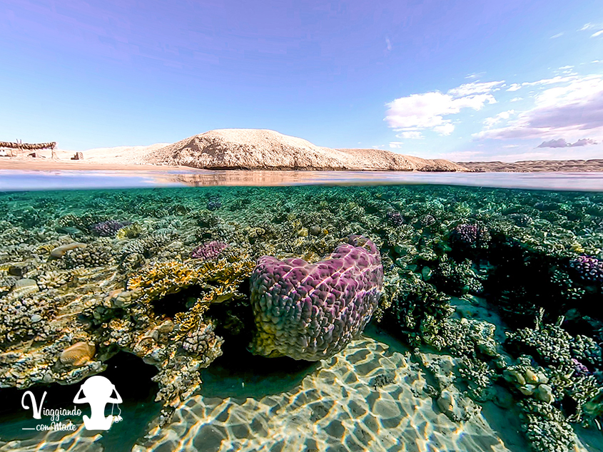 Snorkeling nel parco di Ras Mohammed